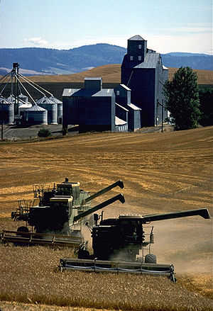 Palouse - A farm in Whitman County, Washington