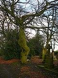 Wilsden Cemetery (2125366682).jpg