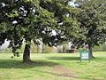 Winchester Cemetery Winchester Park Memphis TN 12.jpg