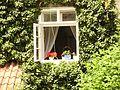 Window - panoramio - Stano Krško.jpg