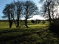 Winter shadows - geograph.org.uk - 306777.jpg
