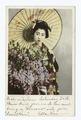 Wistaria, Japanese (NYPL b12647398-63150).tiff
