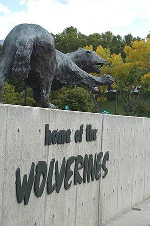Utah Valley University - The school mascot is the Wolverine