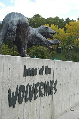 Utah Valley University - The school mascot is the Wolverine