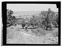 Woman standing with jar on head, Nazareth in distance LOC matpc.14017.jpg