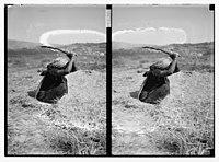 Woman threshing with flail LOC matpc.06350.jpg