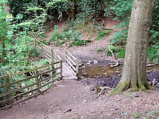 Wooden Bridge, Rivington Country Park - geograph.org.uk - 1906969