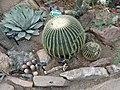 World Deserts - US Botanic Gardens 44.jpg