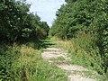 Wulfrun Way - Holly Bank Colliery Railway - geograph.org.uk - 1241834.jpg