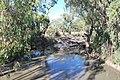 Yanko Creek Kidman Way 003.JPG