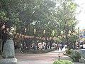 YonKonStreetPark.JPG