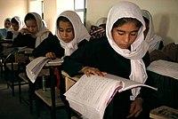 Image Result For Afghanis