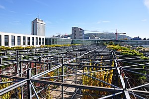 MFO-Park - Steel frame and climbing plants