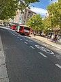 Zaragoza Aug 2020 20 38 45 788000.jpeg