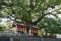 Zentsu-ji in Zentsu-ji City Kagawa pref44n4592.jpg