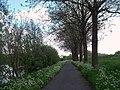 Zuidschote - Flandre Belge - Belgian Flanders - Belgische Vlaanderen - panoramio.jpg
