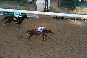 "2012 Kentucky Derby - Image: ""I'll have Another"" crosses the fininsh line to win the 2012 Kentucky Derby"