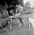 """""""Mal?n"""" (ročni mlin) za jabolka in drugo sadje mlet, Kočarija 1956.jpg"""