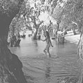 """""""Marshes. Between Reni and Ismail"""" (the end of 60th years). (5903626843).jpg"""
