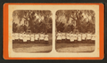 'These are the sisters.', from Robert N. Dennis collection of stereoscopic views.png
