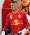 ÖFB-Cup Halbfinale FC RB Salzburg gegen FK Austria Wien 45.JPG