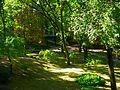 Внутренний парк ТНУ - panoramio.jpg