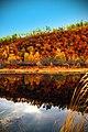 В Николаевске самая красивая Осень.jpg