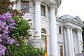 Елагин дворец, вазы.jpg