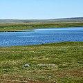 Озеро в тундре.Приуральский район, Ямало-Ненецкий округ, Россия - panoramio.jpg