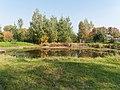 Озеро - panoramio (390).jpg