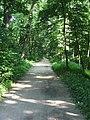 Парк Александрия (дорога) - panoramio.jpg