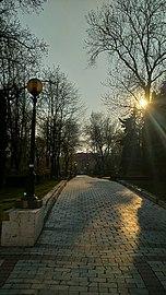 Парк імені Тараса Шевченка DSC 0674.jpg
