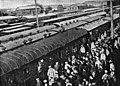 Прибытие пленных японцев.jpg