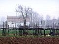 Рабочая поза (На винограднике) - panoramio.jpg