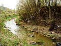 Речка Кова (Старка) - panoramio.jpg