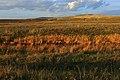 Речка Малая Хобда октябрьским вечером - panoramio.jpg