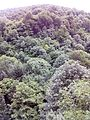 Смоларски водопад 68.jpg