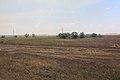 Степной пейзаж к северу от грейдера - panoramio.jpg