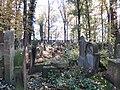 בית הקברות היהודי בקרקוב - קברים (7).jpg