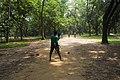 গজারী বনে বাচ্চাদের ক্রিকেট খেলা ১.jpg