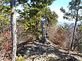 大山山頂 2013-11-17 - The summit of Mt. Ooyama - panoramio.jpg