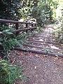 階段の近くで撮影した。ここから降りて行くと最も近い集落まで着く。 2013-07-07 16-37.jpg
