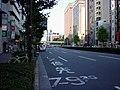 青山通り - panoramio.jpg