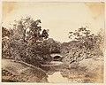 -Botanical Gardens, Calcutta- MET DP147416.jpg