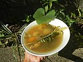 0526Cuisine food in Baliuag Bulacan Province 31.jpg