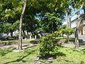 0822jfIntramuros Manila Landmarks Buildingsfvf 27.jpg