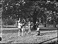 09-11-1952 10966 Vondelpark (9966533543).jpg