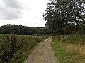 1066 Country Walk - geograph.org.uk - 2050369.jpg