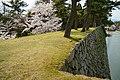 140405 Tsu Castle Tsu MIe pref Japan08s3.jpg