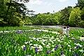 140517 Kobe Municipal Arboretum Japan02bs.jpg